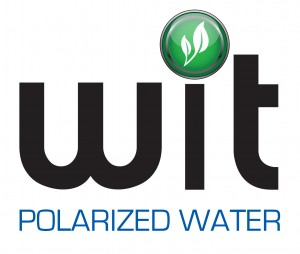 WIT-Polarized Water Logo