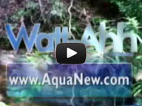 Watt-Ahh by AquaNew Video